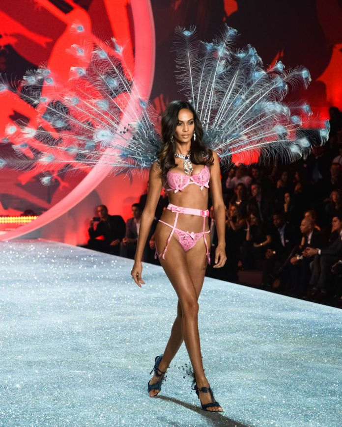 joan-smalls-at-2013-victoria-s-secret-fashion-show-in-new-york-4